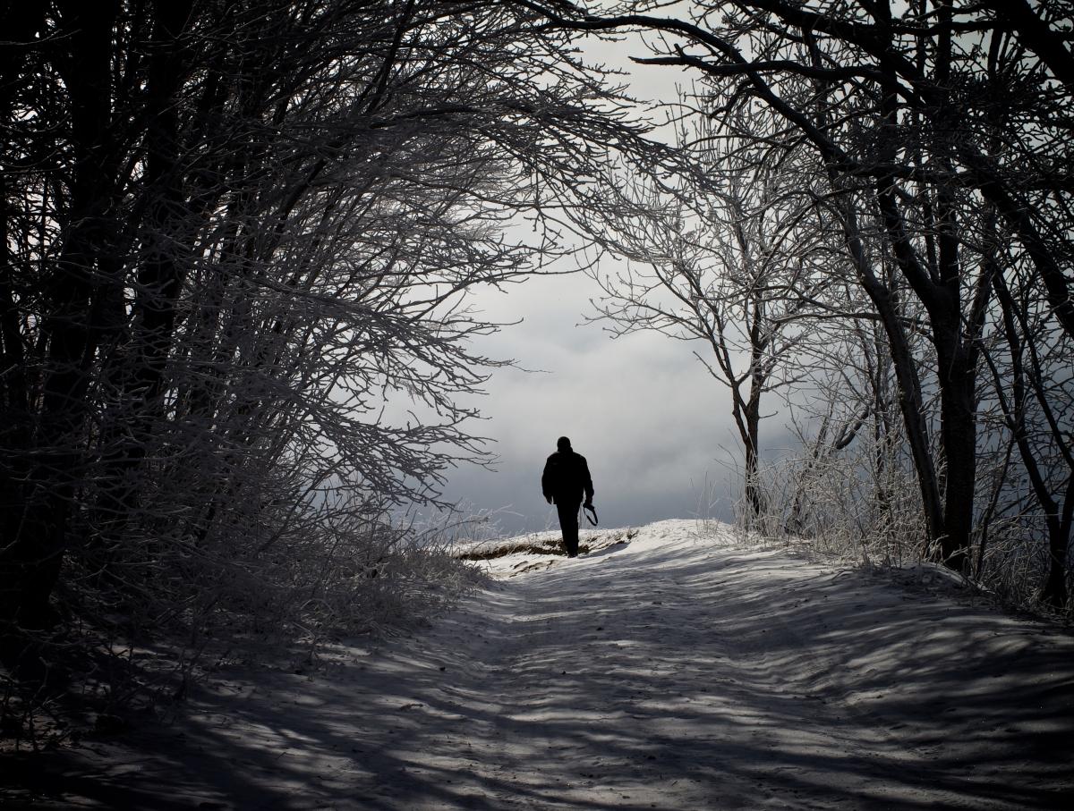 3 Winter Lunes