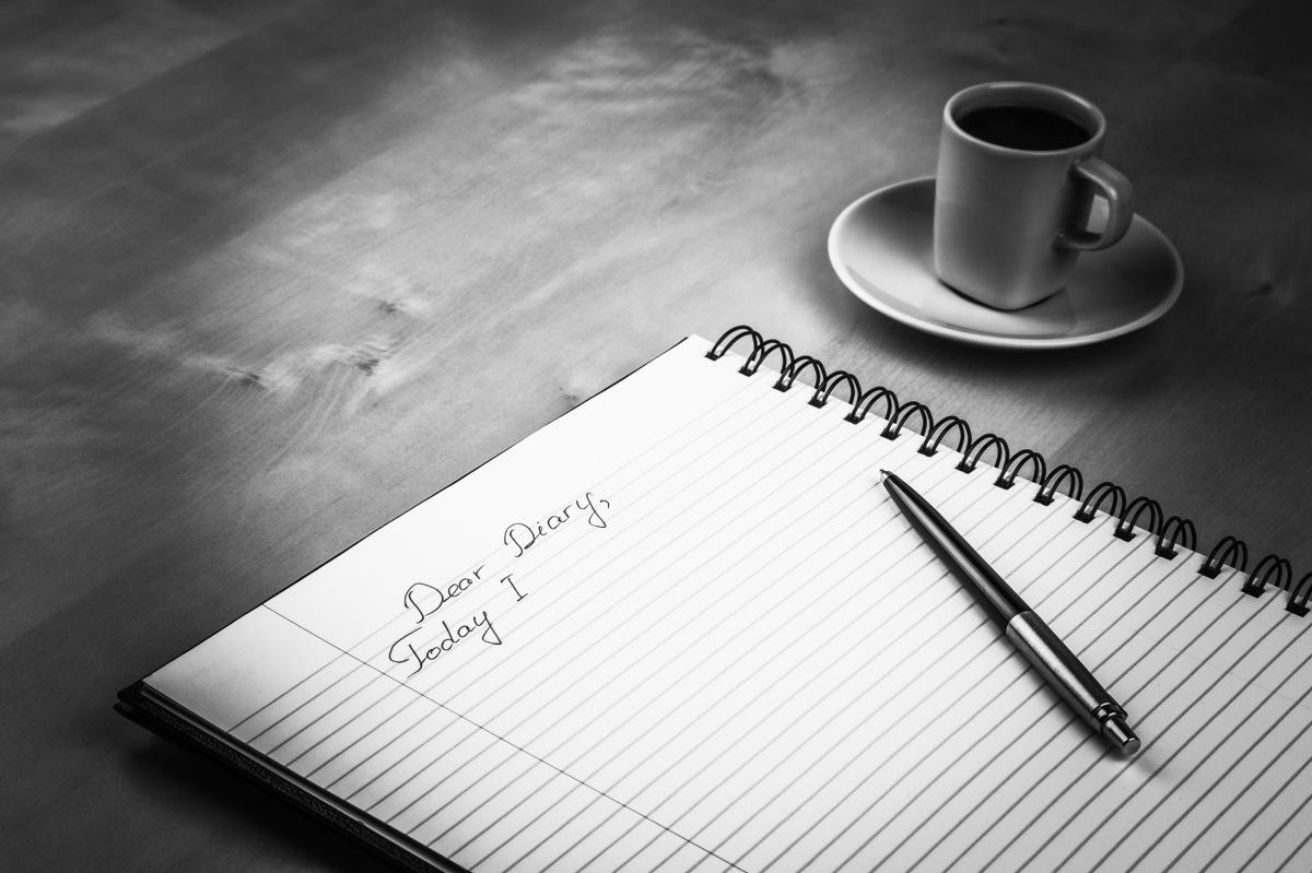 Fear's Diary
