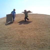 Youthful Passions: Sliding Cardboard Boxes Down Hills