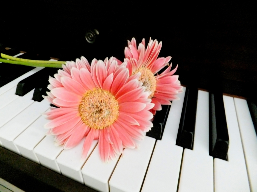 Flowers on the Piano