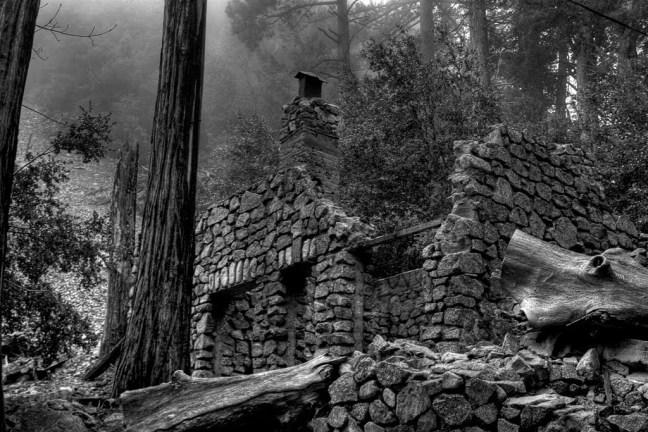 Ruin in the Woods