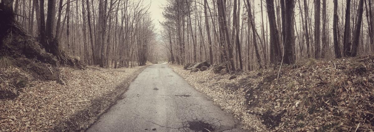 Halloween – Autumn Road(Sonnet)