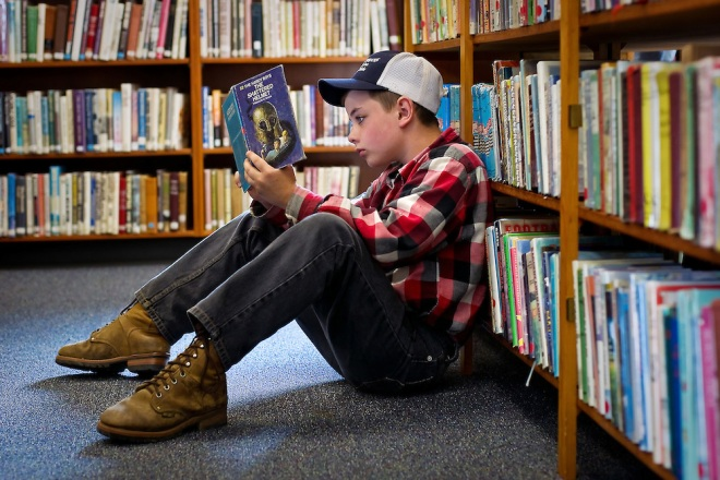 Library Reader - Hardy Boys