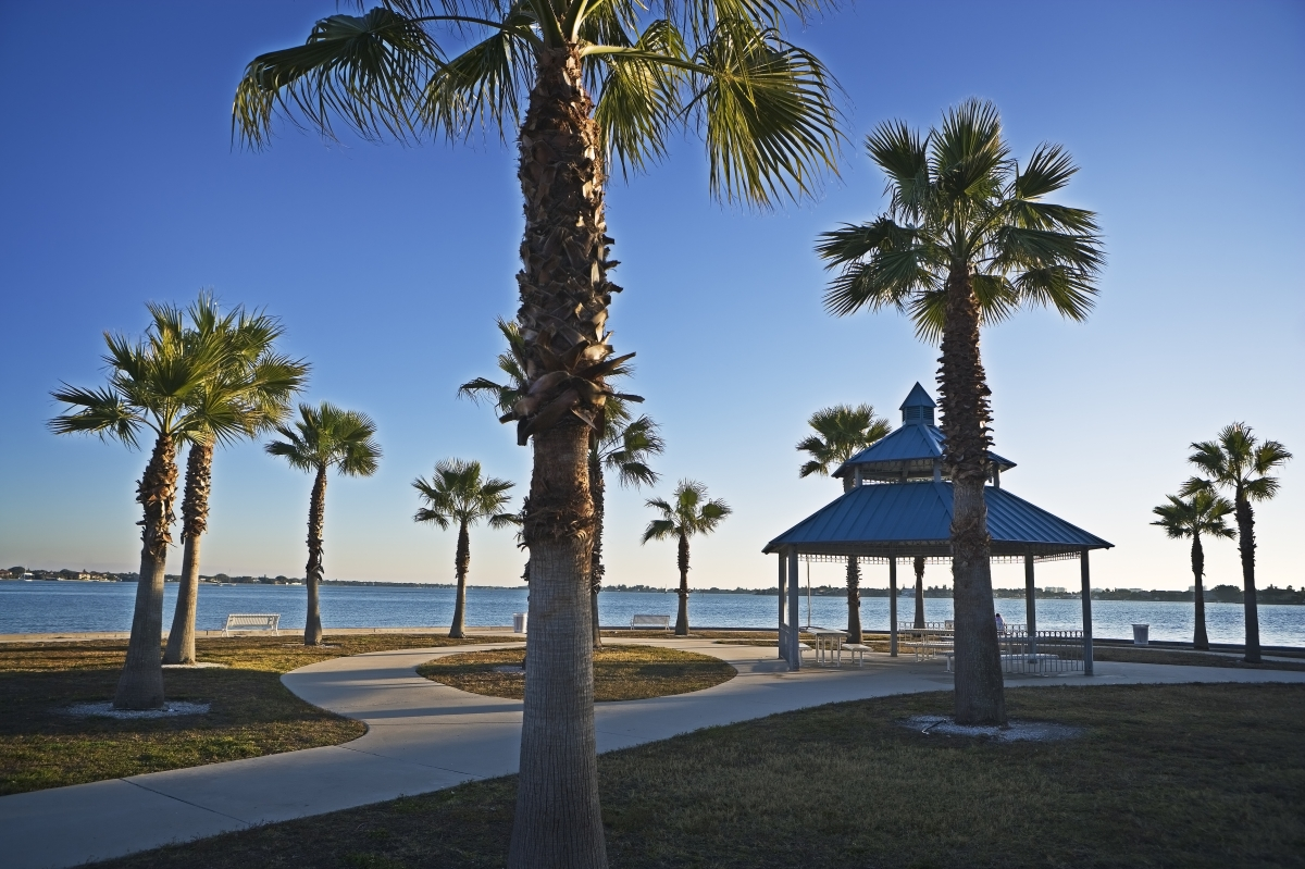 Palms & Pavilion