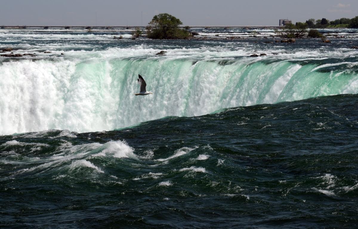 Skim the Falls