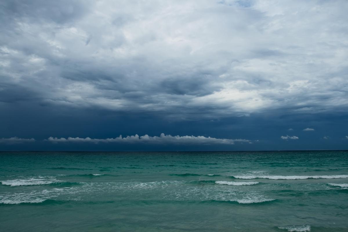 The Distant Rain