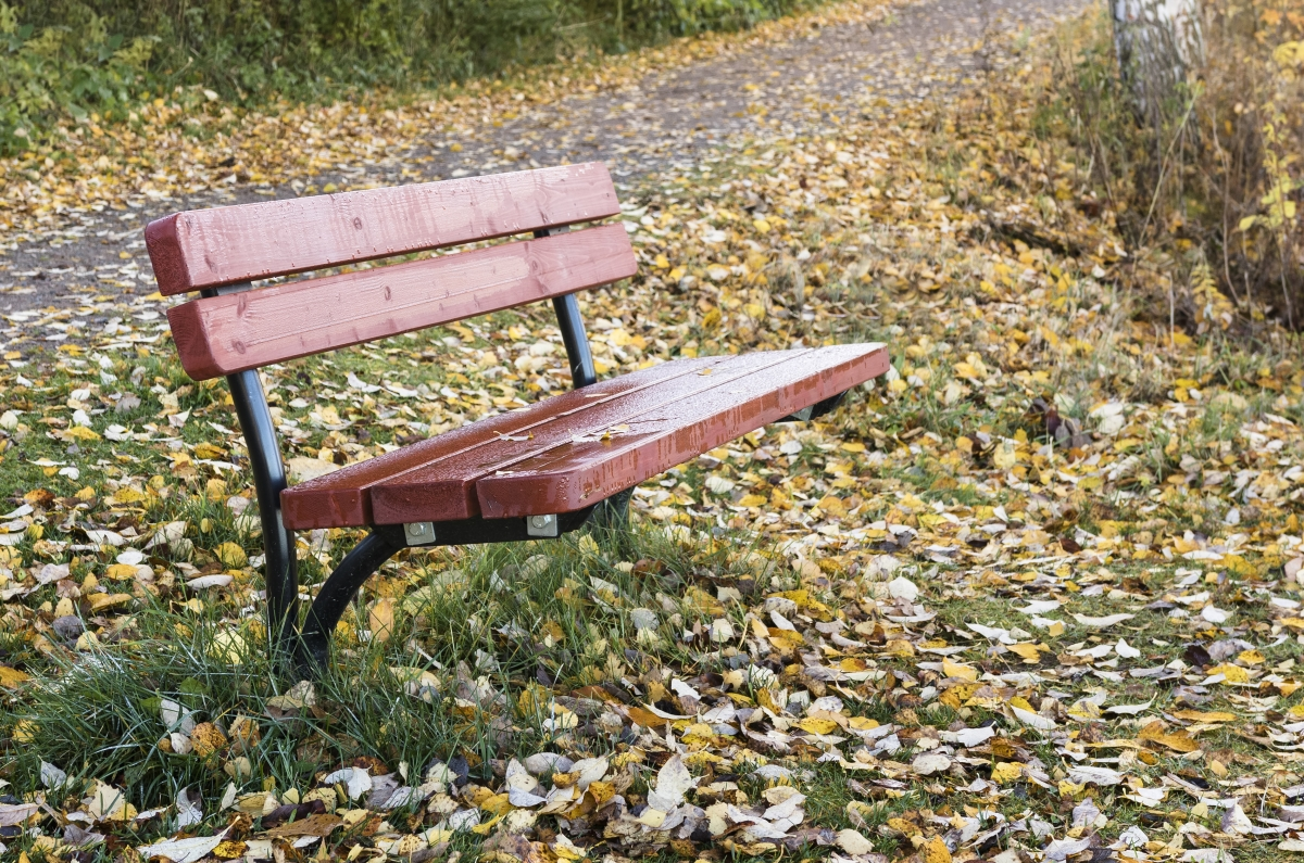 The Bench of Goodbye