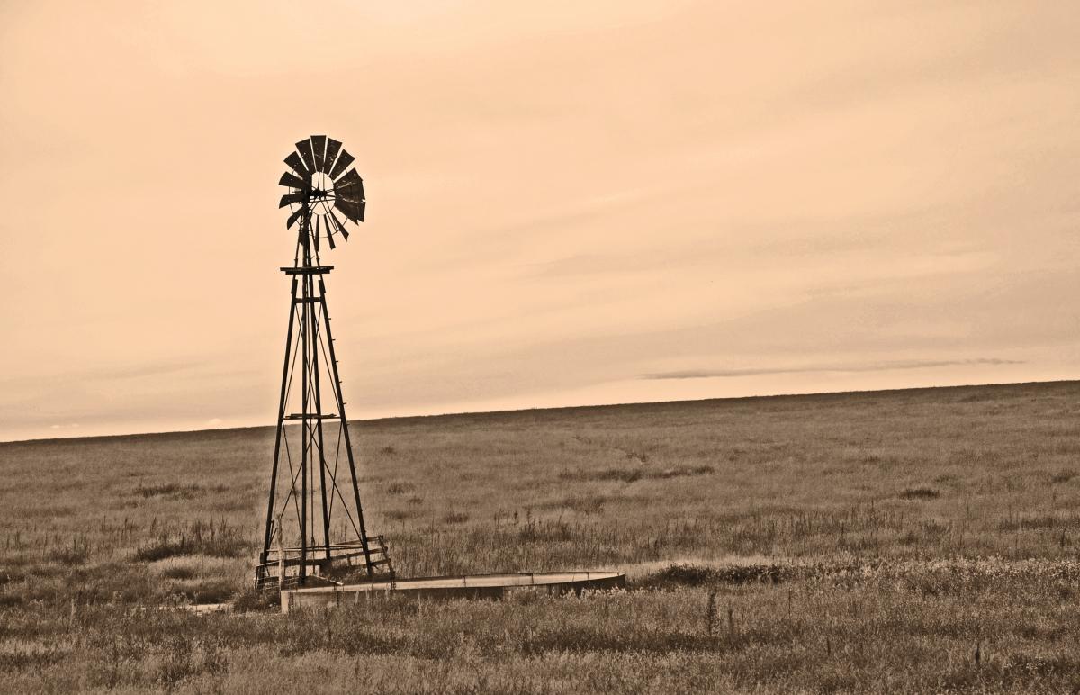 The Windmill On thePlain