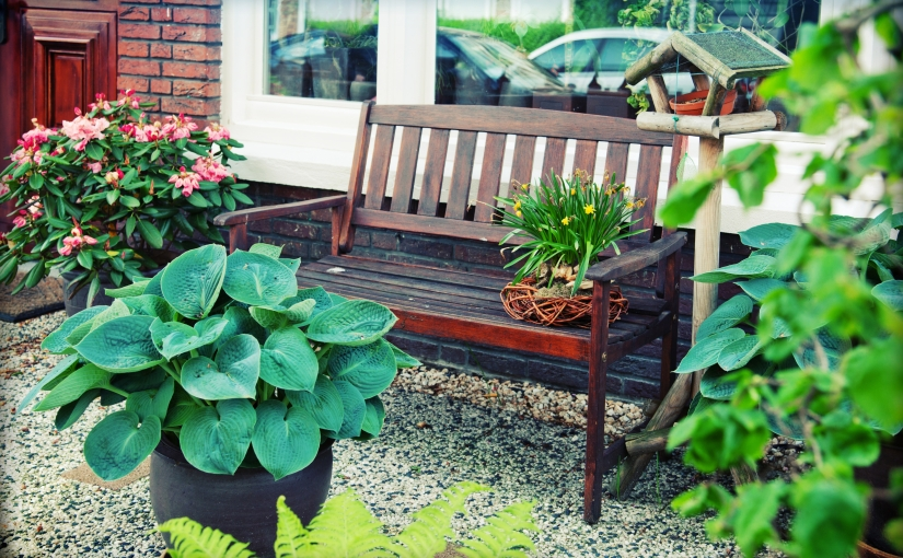 a backyard bench