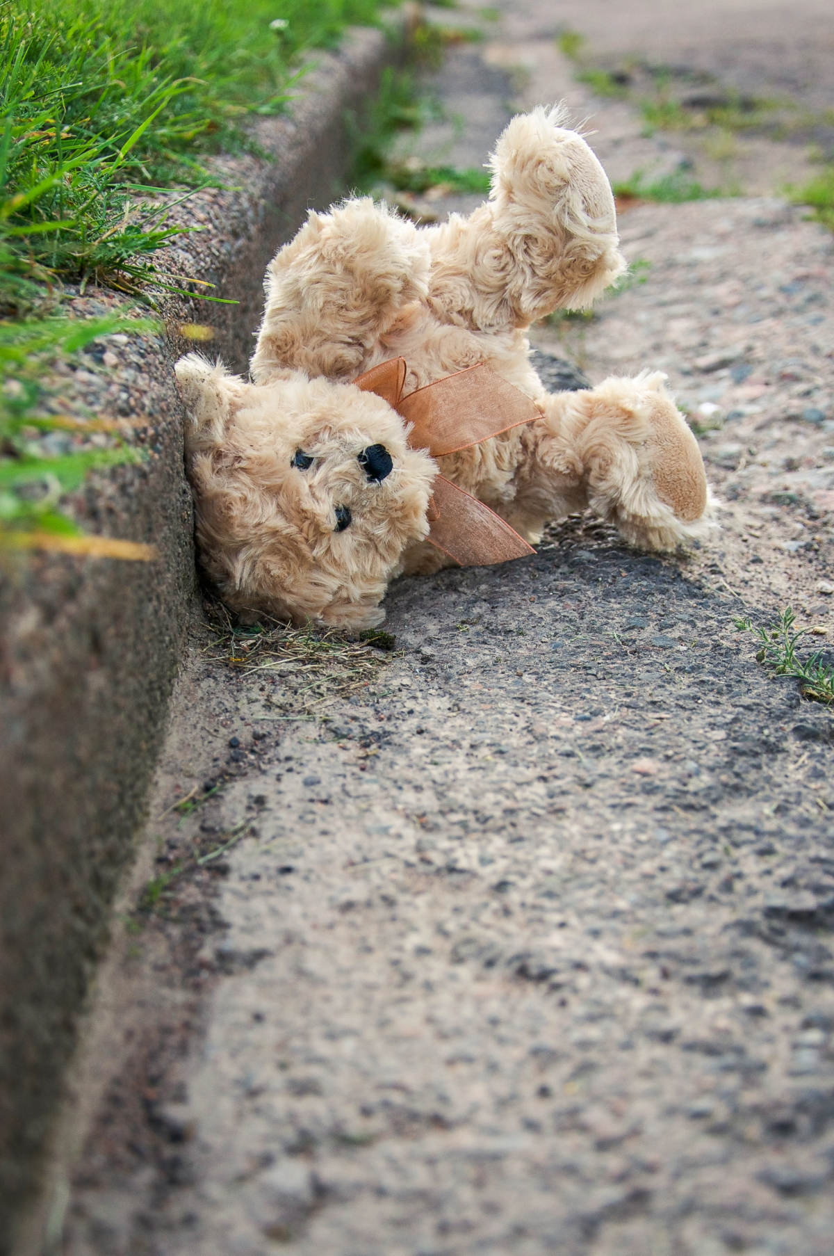 Snapshot: Discarded Toy