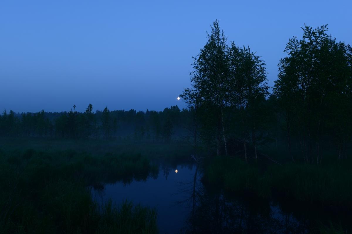 The Moon inSummer