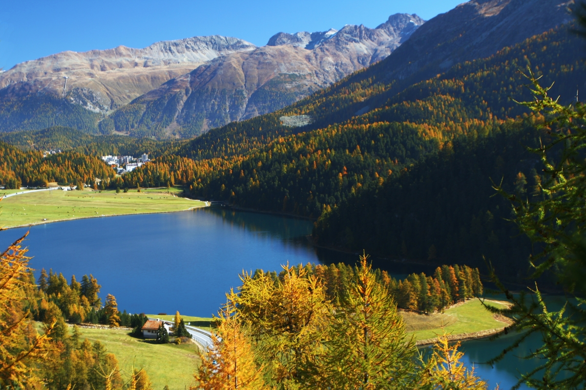 A View from St. Moritz