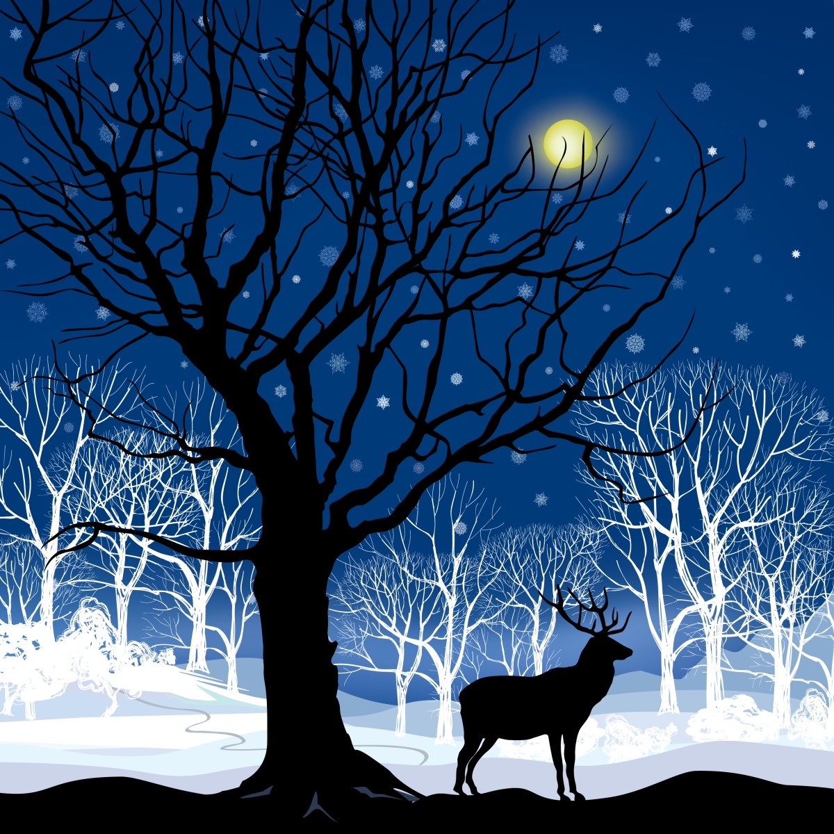 The night is waiting deer with eyes...