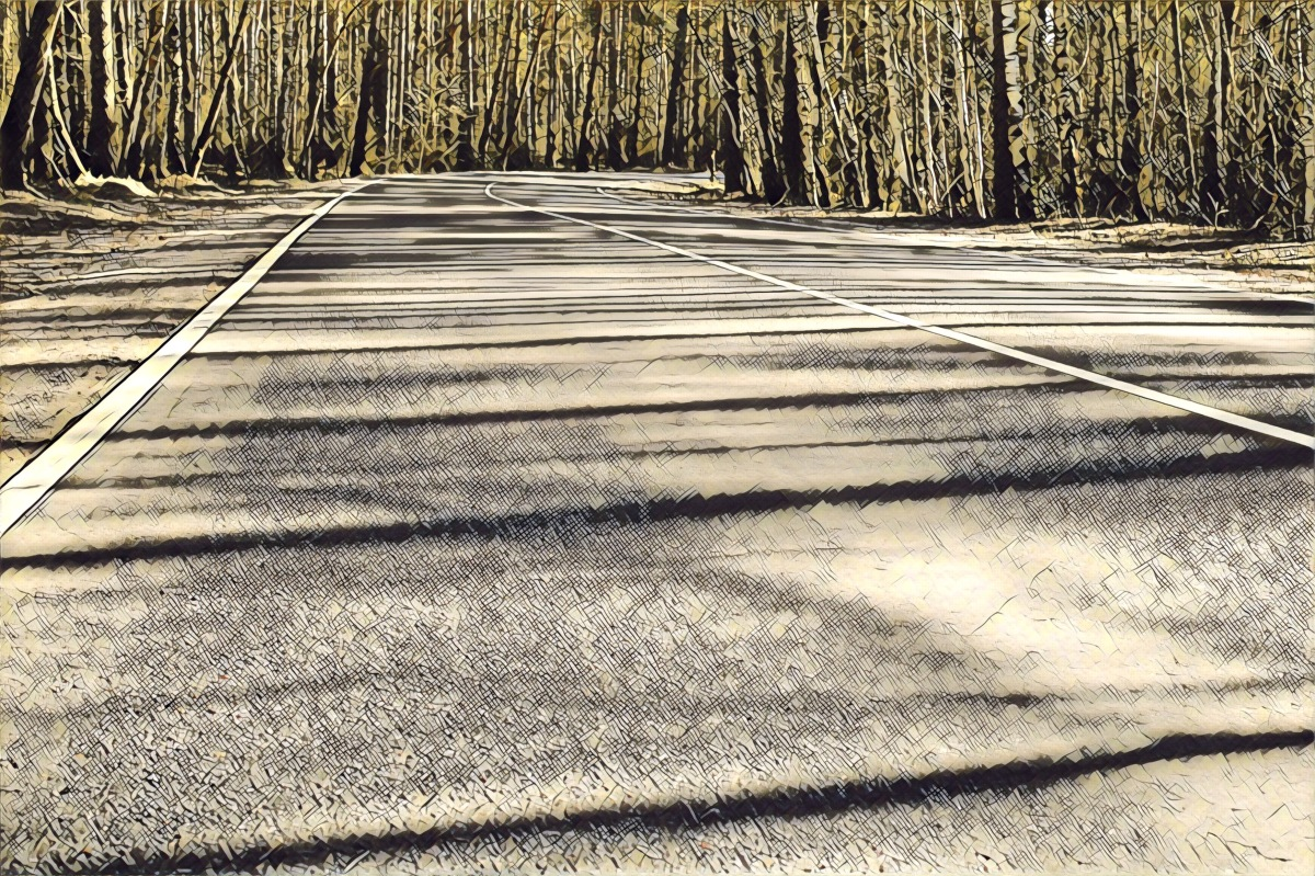 now shadows stretch across theroad